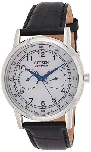 Citizen Men's Eco-Drive Stainless Steel Casual Watch with Day/Date,...