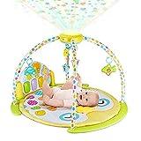 BABYSEATER Baby Gym and Playmats - Kick and Play Piano Baby Play Mat...